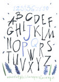 Alphabet and numbers hand drawn in  with watercolor flowers Royalty Free Stock Photos