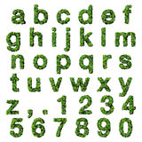 Alphabet with numbers made from green leaves isolated on white background. 3D render. Royalty Free Stock Photos