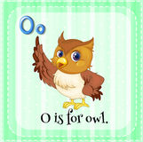 Alphabet O is for owl Stock Photos