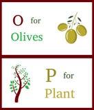 Alphabet O und P Stockfoto