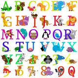 Alphabet orienté animal de vecteur Image libre de droits