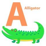 Alphabet pour la bande dessinée d'alligator de lettre des enfants A Photos stock