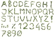 Alphabet from the rest of christmas tree Royalty Free Stock Image