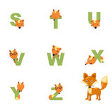 Alphabet S-Z Fox Images stock
