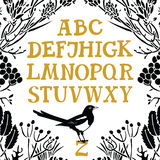 Alphabet Serif font Floral frame and Magpie vector illustration