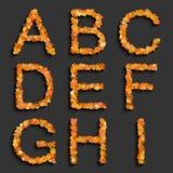 Alphabet set with circles Stock Images