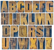 Alphabet set in vintage letterpress wood type Royalty Free Stock Photos