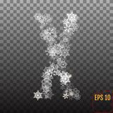 Alphabet from sparkling snowflakes. Transparent Silver snowflake Stock Photos