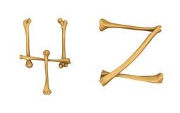 Alphabet squelettique Y et Z Photographie stock libre de droits