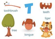 Alphabet T Stock Image