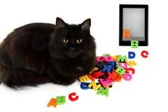 Alphabet und schwarze Katze mit elektronischem Buch auf weißem Hintergrund. Lizenzfreie Stockfotografie