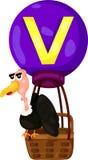 Alphabet V pour le vautour Photographie stock libre de droits