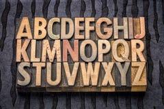 Alphabet in vintage letterpress wood type. Printing blocks against black lokta paper Stock Photos