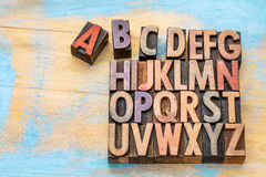Alphabet in vintage wood type. Alphabet concept in vintage letterpress wood type stained by color inks against painted wood with a copy space Royalty Free Stock Images