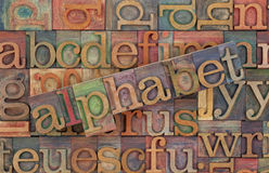 Alphabet in vintage wood type. The word of alphabet across a background of vintage wooden letterpress type blocks, stained by color inks Royalty Free Stock Photography