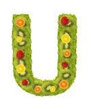Alphabet von der Frucht - U Lizenzfreies Stockbild