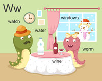 Alphabet.W. Letter watch water wine worm windows Royalty Free Stock Images