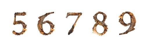 Alphabet wood texture 5 6 7 8 isolated on white background. stock photo