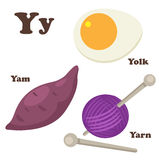 Alphabet Y letter.Yam,Yarn,Yolk Stock Photos