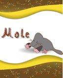 Alphabetbuchstabe M und Mole Stockfotografie