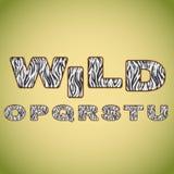 Alphabetnachahmungs-Zebrapelz Stockbild