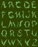 Alphabetnatur Lizenzfreie Stockbilder