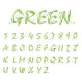 Alphabets et collection verts liquides de nombres illustration libre de droits