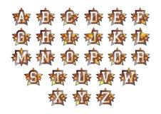Alphabetsterne eingestellt Lizenzfreie Stockfotografie
