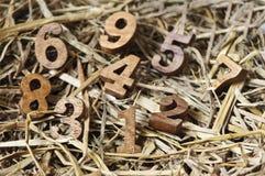 Alphabetzahlen auf einem Nest des Heus Lizenzfreie Stockbilder