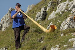 Alphorn player Stock Image