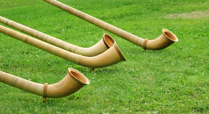 Alphorns on green lawn. Alphorns, traditional folkmusic instrument - switzerland, an green lawn Stock Image