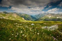 Alpi Immagine Stock