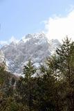Alpi Fotografie Stock
