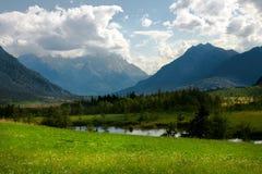 Alpi ad estate Immagini Stock