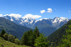 Alpi alpine di Adamello delle montagne di vista di panorama Immagine Stock