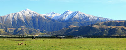 Alpi alpine Nuova Zelanda Immagine Stock