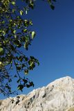 Alpi Apuane, Massa Καρράρα, Τοσκάνη, Ιταλία Η κορυφή του Pizzo στοκ εικόνα