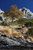 Alpi Apuane, Massa Carrare, Toscane, Italie Paysage avec le b?ti image stock