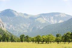Alpi in Austria Immagini Stock