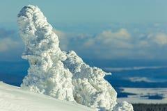 Alpi Austria di inverno Immagine Stock Libera da Diritti