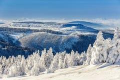 Alpi Austria di inverno Immagine Stock