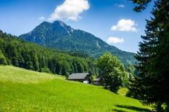 Alpi austriache Fotografia Stock
