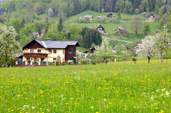Alpi austriache ad estate. Fotografie Stock Libere da Diritti