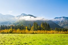 Alpi austriache, Europa Fotografia Stock Libera da Diritti
