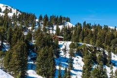 Alpi austriache nell'inverno Immagine Stock Libera da Diritti