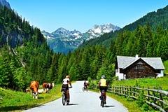 Alpi austriache - un punto di vista dei ciclisti su un percorso nella valle Riedingtal Fotografia Stock