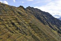 Alpi austriache: Valanga-protezione in Schruns, Montafon-valle, immagine stock libera da diritti