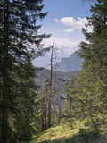 Alpi bavaresi Immagine Stock Libera da Diritti