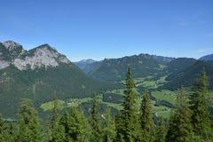 Alpi bavaresi con gli alberi Immagini Stock