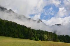 Alpi bavaresi con gli alberi Immagine Stock